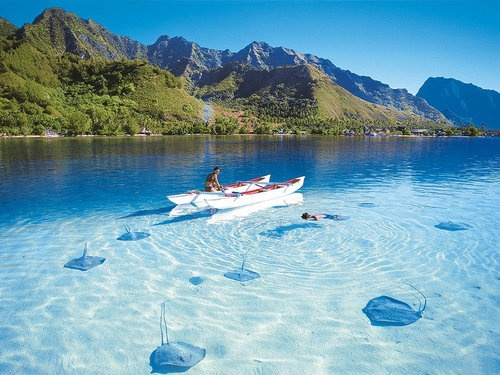 Карибское море - Каймановы острова