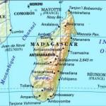 Единожды созданный малагасийский ариар