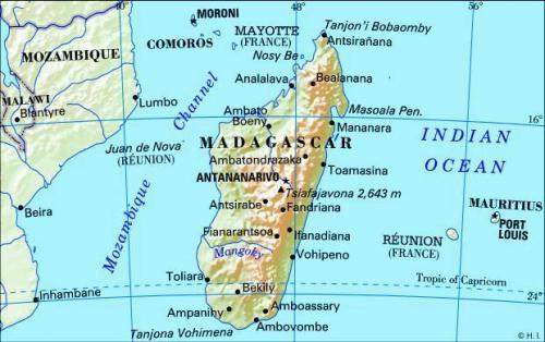 малагасийская валютная единица
