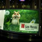 Банк Москвы — отзывы