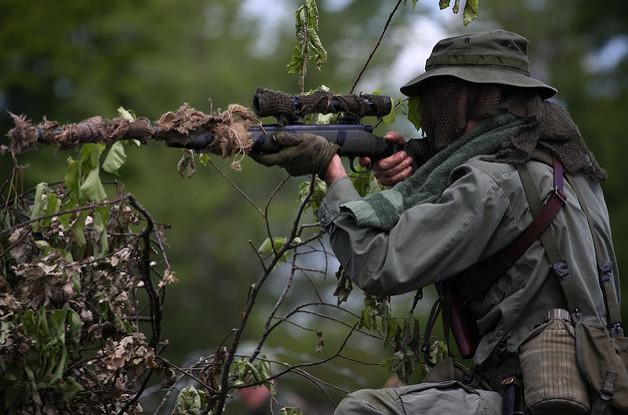 стратегия снайпер форекс скачать